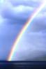 GNP rainbow