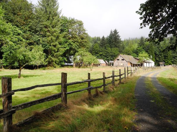 Kestner Homestead in the Quinault Valley