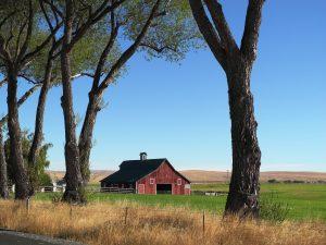 Joseph Farm