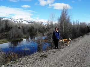 Along the Snake River Trail