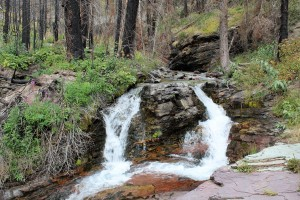 Baring Falls, Glacier Park