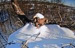 Jan 24 8am first time on snowynest
