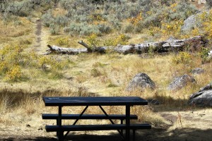 Yellowstone River Picnic Area