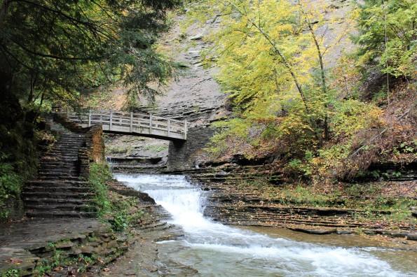 Stony Brook Park