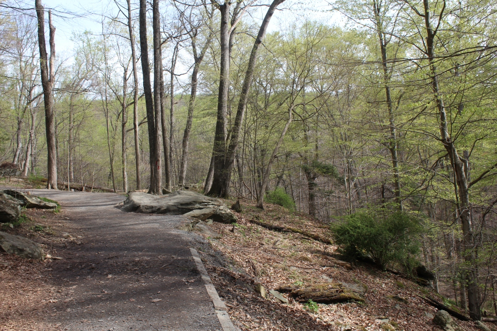 Lower Trail to Cunningham Falls